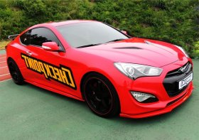 ROADRUNS Side Splitters Genesis Coupe 2010 - 2016