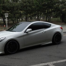 NefDesign Style Side caps Genesis Coupe 2010 - 2016